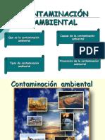 diapositivacontaminacionambiental-090512170559-phpapp02