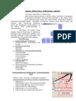 DiuretikaiFarmakologija