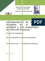 Análisis de La Sobreexplotación de Recursos Forestales en La Reserva Ecológica y Sitio Arqueológico Del Cerro de Amalucan