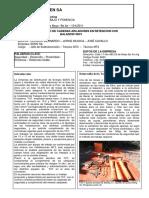 Cambio de Cadena Aisladores Retencion 33kv v CITTES EDEN