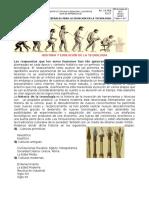 TEC 06.0102  HISTORIA Y EVOLUCIÓN DE LA TECNOLOGÍA