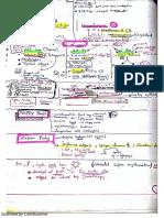 MRCPCH Dermatology Private Notes