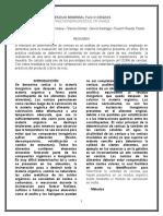 Informe de Micro de Alimentos 2