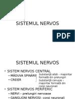 Histologie-lp12 Tesutul Nervos 1