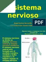Sistema Nervioso.ppt