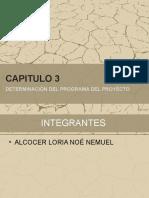 Capitulo 3 Determinacion Del Programa Del Proyecto