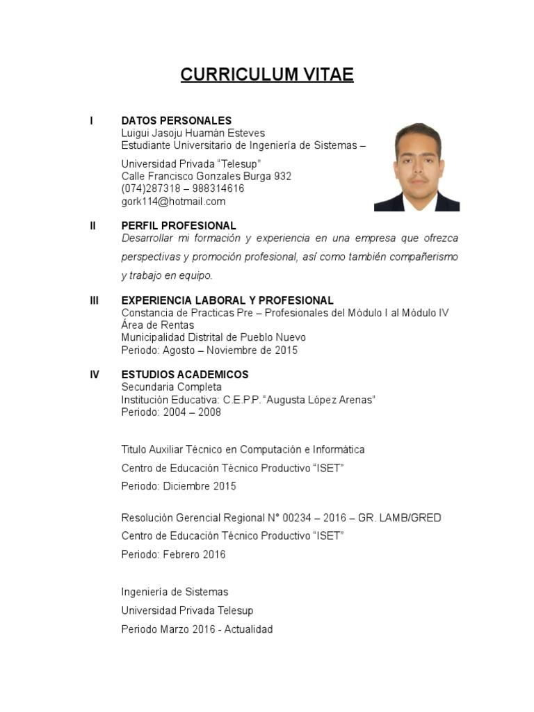 Bonito Ejemplo De Currículum De Estudiantes Universitarios Para ...