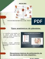 Funciones secretoras del sistema digestivo