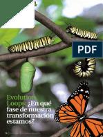 20111212 Viviane Launer Evolution Loops