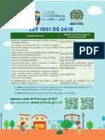 Volante Codigo PONAL 2017