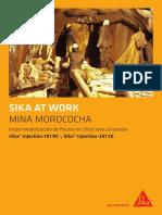 SAW Impermeabilización de Fisuras en Shotcrete - Mina Morococha (1)