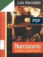 Hornstein (2012) Narcicismo autoestima, identidad alteridad Paidos (1).pdf