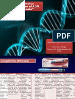 Presentación de Farmacología