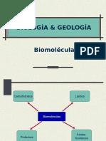 04 Bioelementos y Biomoleculas