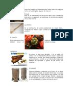 INSTRUMENTOS AUTOCTONOS.docx