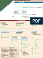 Algoritmo Diarrea crónica.pdf