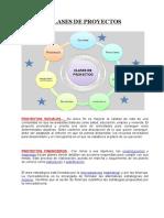 proyecto consulta
