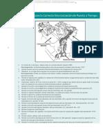 Procedimiento-correcta-sincronizacion-puesta-tiempo-diagrama-herramientas-goniometro-partes.pdf
