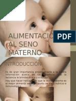 alimentacinalsenomaterno-140329200716-phpapp01