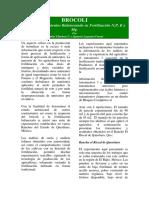 BROCOLI+Mejores+Rendimientos+Balanceando+su+Fertilización+N,P,+K+y+Mg..pdf
