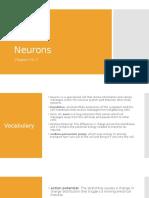 Neurons.. 11...