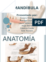lamandibula-140523113628-phpapp02.pptx