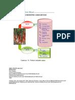 Pohon Industri Cabai