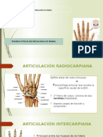 Artrología de Mano