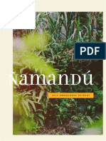 Namandu Retreat Program