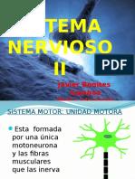 SISTEMA NERVIOSO II.pptx