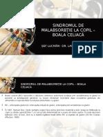 boala_celiaca_2_FEB (1)