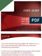 Cost Audit Full