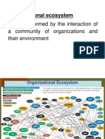 Organizational ecosystem.pdf
