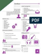 graphic resume 2