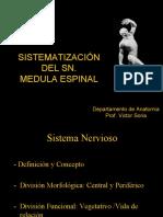 1.Medula Espinal
