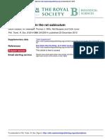 boundary coding in teh rat subiculum