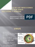 Diagnostico de Las Infecciones Producidas -V. b. h.