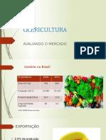 Olericultura Apresentação III