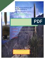 Ecosistemas de Las Puyas Avanse