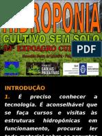 PALESTRA HIDROPONIA 52ª EXPAGRO.ppt