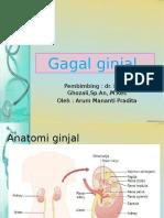 286261770-GAGAL-GINJAL.pptx