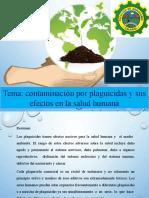 Efecto de Los Plaguicidas en La Salud Humana