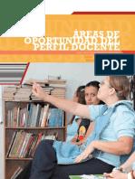 Areas de oportunidad completo.pdf
