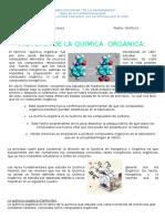 Quimica Organica Gina