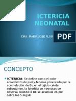 Ictericia Neonatal Basico