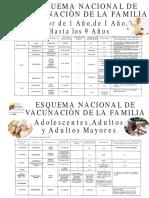 54613612-Esquemas-de-Vacunacion-Venezuela.pdf