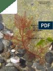Elementos Para La Identificación de Algas de Argentina
