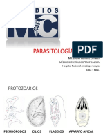 PPT-PARASITOLOGIA (1)