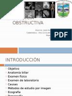 Ictericia Obstructiva