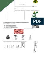 Diagnóstico ciencias naturales 3°